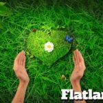 Flatlandia: risto-bar vegano a Pescara