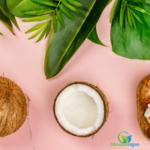L'olio di cocco ed i segreti di bellezza